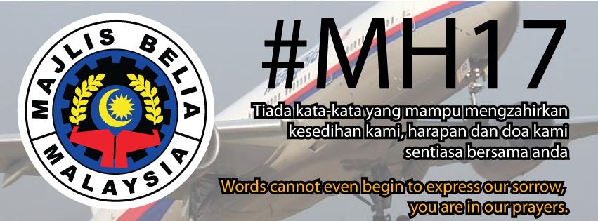 mh17-web